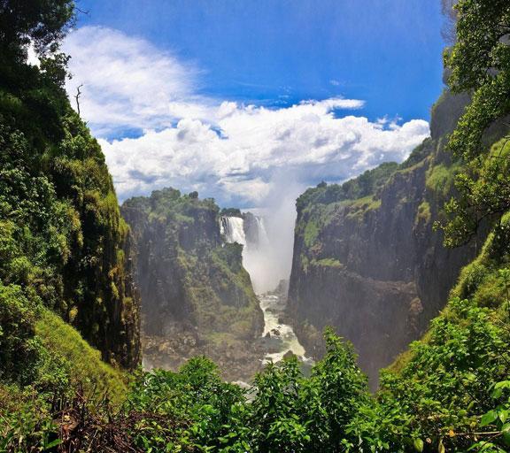 Rumore della giungla e della cascata